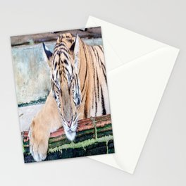 Tiger Sleeping Stationery Cards