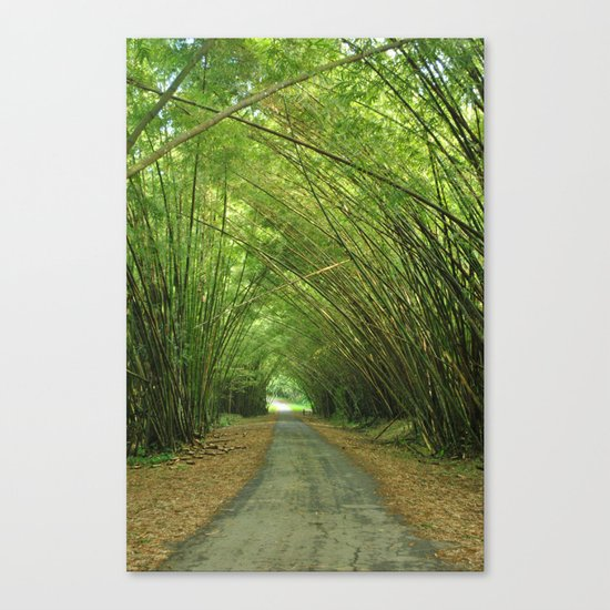Bamboo Cathedral  Canvas Print