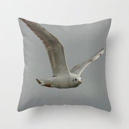 Seagull In Flight Against Gray Sky Vector Throw Pillow