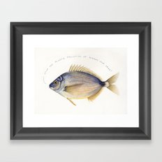 Stop the plastic pollution of oceans and seas! Framed Art Print