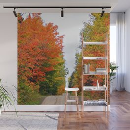 Mountain Road in Autumn Colors Wall Mural