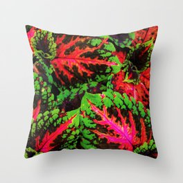 Tropical Conflilction Throw Pillow