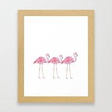 Flamingo - pink bird - animal on white backround Framed Art Print