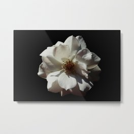 Flower Portrait Metal Print