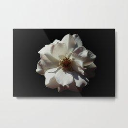 Flower Portrait Metal Print