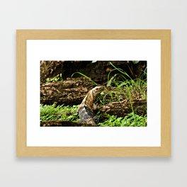 Hi there, I'm a lizard! Framed Art Print