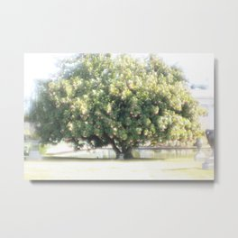 Hollywood Forever Cemetery  Metal Print