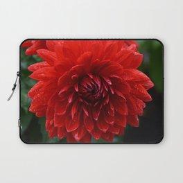 Fresh Rain Drops - Red Dahlia Laptop Sleeve