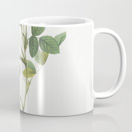 Queen Elizabeths Sweetbriar Rosehip of Queen Elizabeth (Rosa rubiginosa zabeth) from Les Roses (1817 Coffee Mug