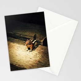 Cute Critter Stationery Cards