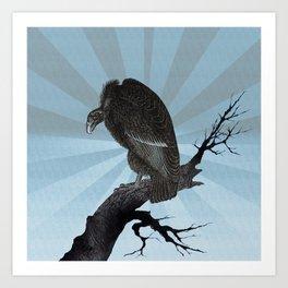 Old World Vulture Art Print