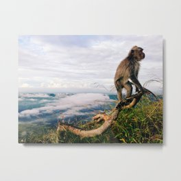 monkeys 2 Metal Print