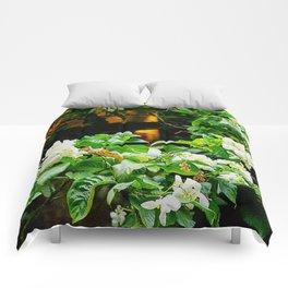 Flowers At Dusk Lit By Lantern Light Comforters