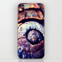 shell iPhone & iPod Skins featuring Shell by Efua Boakye