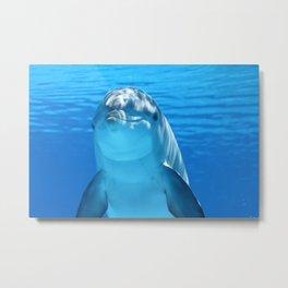 Dolphin's Smile Metal Print