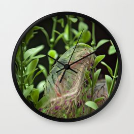 Jellyfish with Stripes Wall Clock