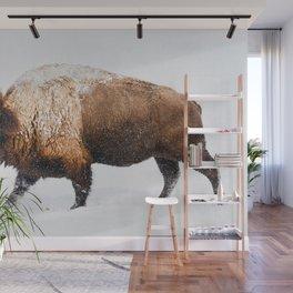 Buffalo In The Snow Wall Mural