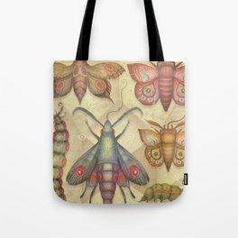 Entomology Tab. V Tote Bag