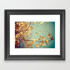 golden aspen Framed Art Print