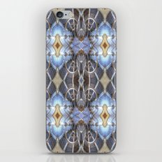 Coming out of the closet iPhone & iPod Skin