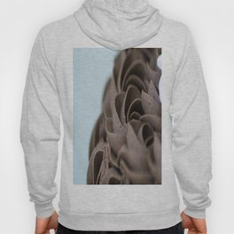 Icing Rosettes Hoody