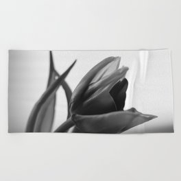 Tulip Blooming In Black And White Beach Towel