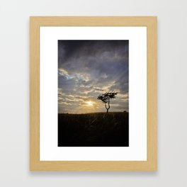 Phoenix Sunset Framed Art Print