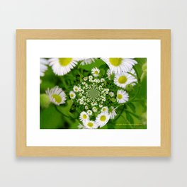 KaleidoskopFlowers Framed Art Print