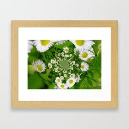 KaleidoskopFlowers Framed Art Print