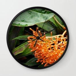 Orange Buddha Belly Plant Wall Clock