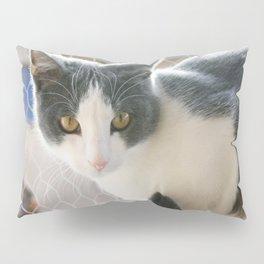 A Max And Mantle Bi Colour Cat Pillow Sham