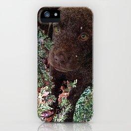 Puppy in the Hemlocks iPhone Case