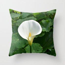 Cala Throw Pillow