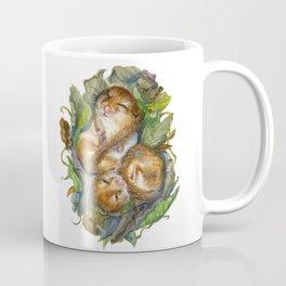 Dormouse Hibernation Coffee Mug