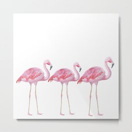 Flamingo - Pink Bird - Animal On White Background Metal Print