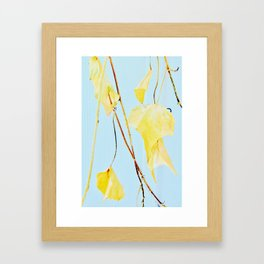 Yellow Ivy Framed Art Print