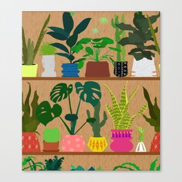 Plants on the Shelf in Warm Wood Canvas Print