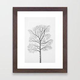 Birch Framed Art Print