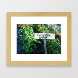 Weeds Free U-Pick Framed Art Print