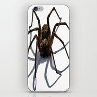 spider iPhone & iPod Skins featuring SPIDER by aztosaha