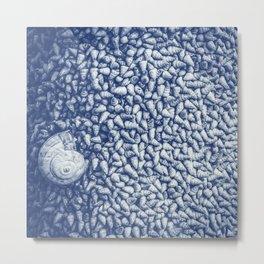Cian snail shells Metal Print