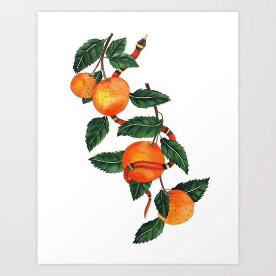 Oranges and a snake Art Print