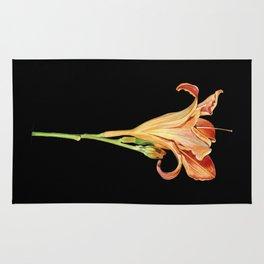 Orange Daylily Illustration Rug