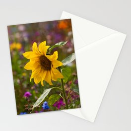 Summer Carnival Stationery Cards