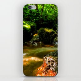 Fresh water source in the summer forest iPhone Skin