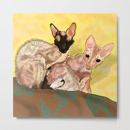 Tiger and George - the Cornish Rex Cats Metal Print
