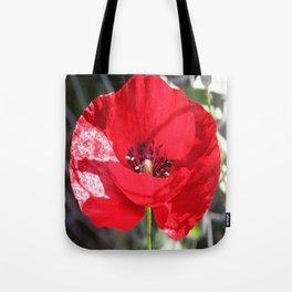 Single Red Poppy Flower  Tote Bag