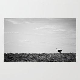 Lone Ostrich, Namibia Rug