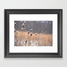 Snow Walk Framed Art Print