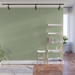 Sweet Pea Green Solid Color Inspired by Behr Willow Grove PPU11-06 Wall Mural